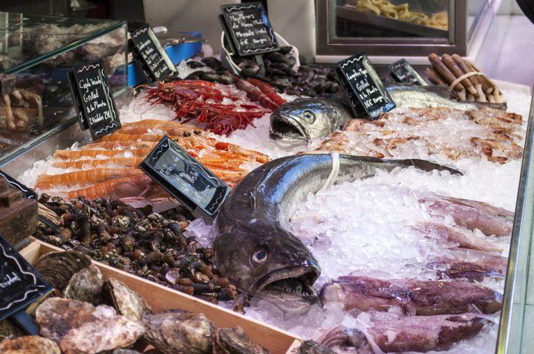 fish shop 1111293 1920 768x510